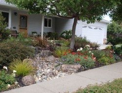Dry Stream Bed Landscaping