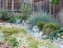 Dry creek bed gardens really can fix a wide variety of gardening issues.