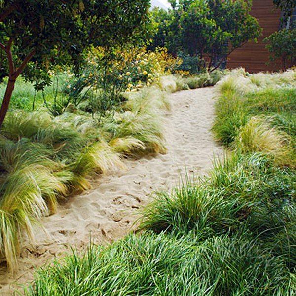 Sandy Path Design - Cornish Garden Landscapes