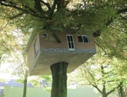 Senior Center Turned Treehouse by Benjamin Verdonck - http://track.be/en/index.php/kunstenaars/detail/benjam_verdonck