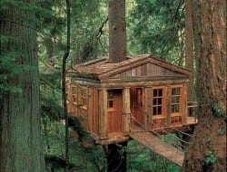 It's almost too elegant to be called a tree house isn't it, especially with that rope bridge.