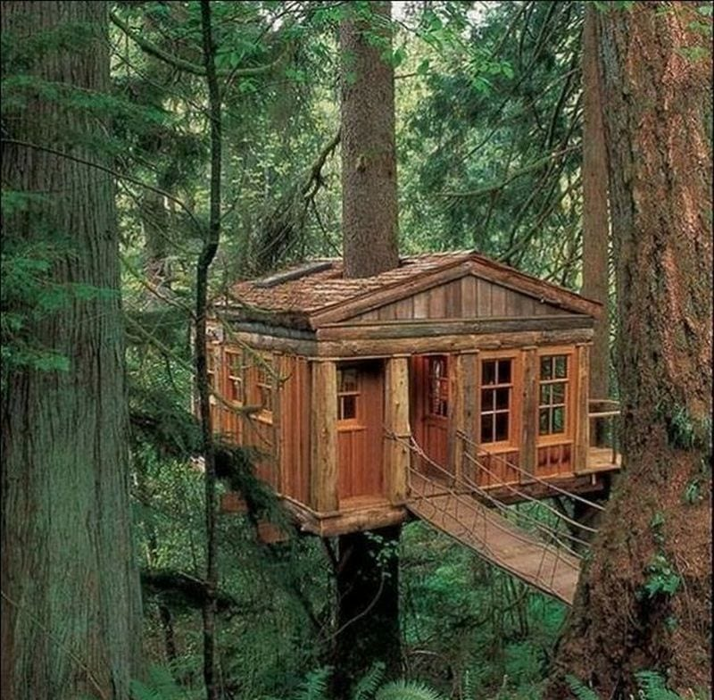 It\u0027s almost too elegant to be called a tree house isn\u0027t it especially : elegant-tree-houses - designwebi.com