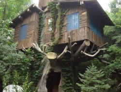 Doesn't this tree house look like it came straight out of a fairy tale?
