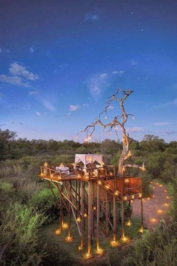 Is it a tree house or is it glamping or some combination of the two? We can tell you it's the Lion Sands Ivory Lodge in Kruger Game Reserve.