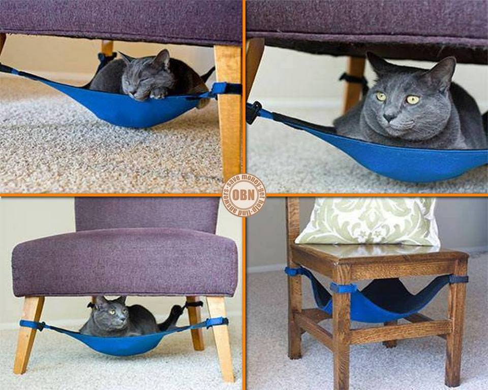 Would this hammock be enough to keep your cat off your lap or would it just make it more convenient?