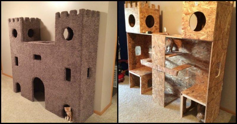 Cat Castle