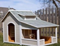 This kennel complete with veranda (porch) is a great idea, particularly with summer practically upon us here in the southern hemisphere.  Remember that shade and plenty of clean water are just as important to your furry friends as they are to us.