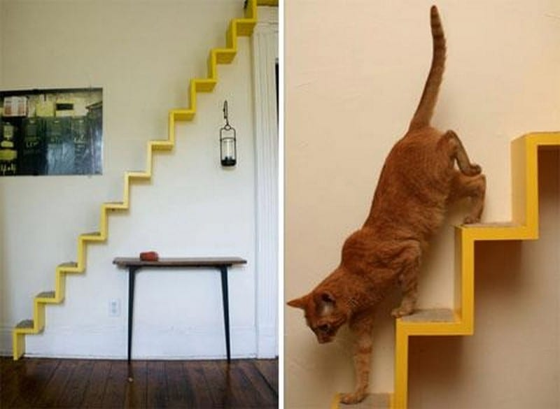 Here's another great idea to keep our indoor cats busy.  This