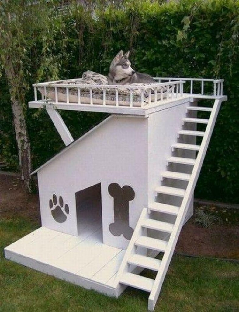One of our dogs favourite places to sleep is on our outdoor furniture.  I'm wondering whether this dog kennel with viewing platform might be more to their liking. My biggest concern is that the kids and the dogs would fight over it :-)  Would your pampered pooch (or child) like one?