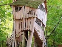 Crooked Tree House