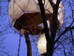 Geodesic Tree House