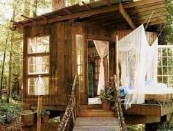 A tree shed?
