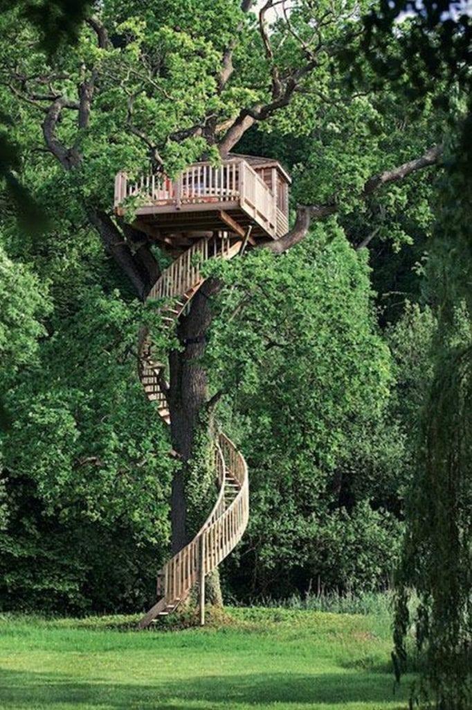 Tree house anyone?