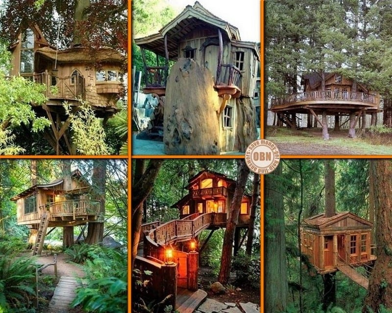 We're never too old to have a tree house! Which one of these would you like in your yard?