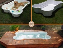 Is this something your pet would love to have? Why not ask them what they think of the idea...