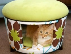 Here's an interesting way to share your furniture with your pet :-) Let us know what you think of it.
