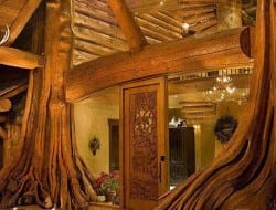 Amazing Log Home - Entry