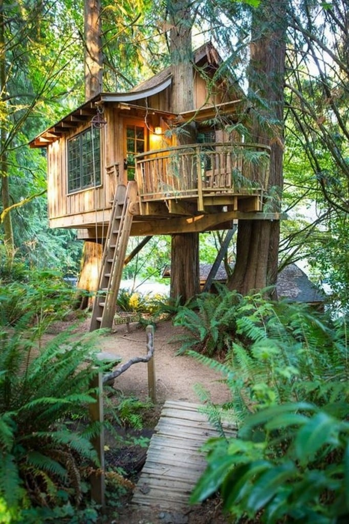 Maybe I should move to Issaquah, Washington so I could have this tree house?