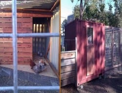 You've seen houses made from recycled shipping containers, but what do you think of this shipping container chicken coop?