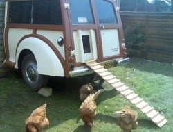 How cute is this? A mobile home for your chooks!