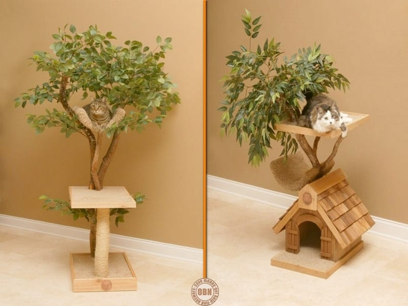 Cats do like to climb trees, but if yours is an indoor cat, this might be the perfect compromise. Thoughts?