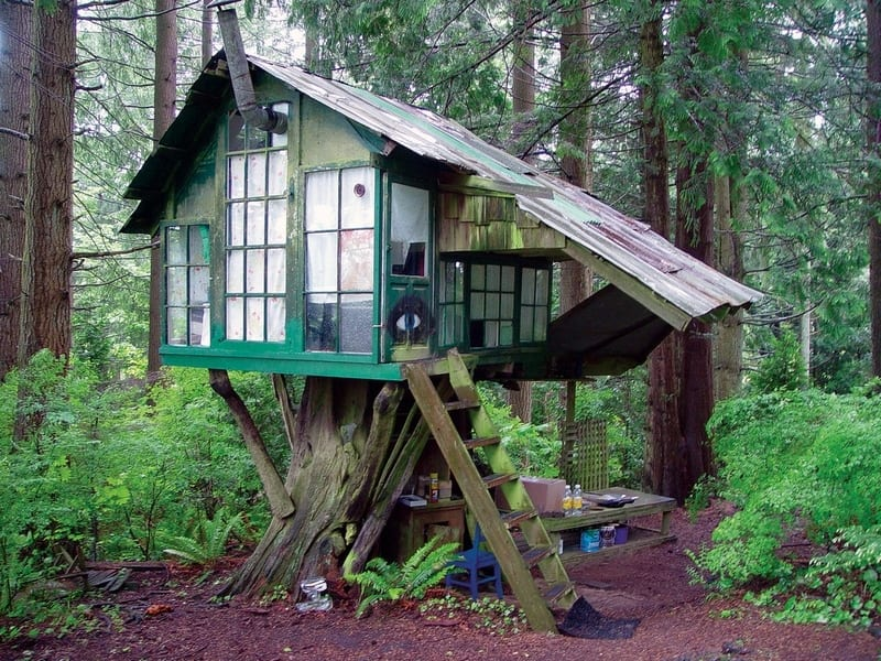 Salvaged windows, old roofing, some reclaimed flooring and you've got yourself a little tree house.