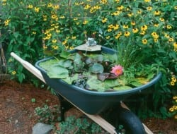 Personally I would have used an old wheelbarrow, but this idea shows that you can make a water feature out of just about anything.