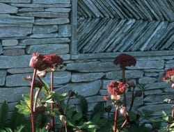 Andrew Loudon is recognised as a dry stone walling master craftsman. You can see why.