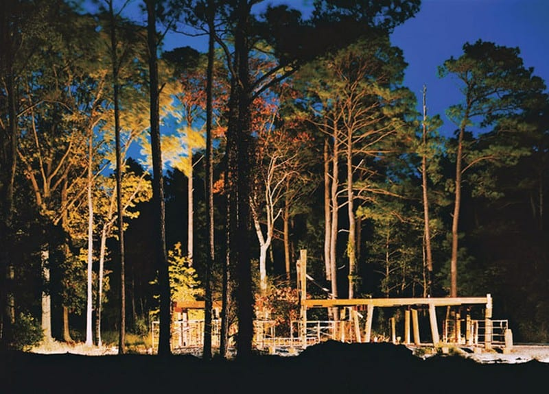 Loblolly House - Site Location