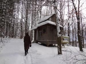The Cottage on the Hill   – Zinta Aistars