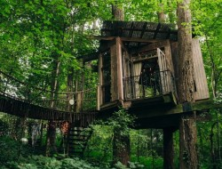 Treehouse in the City - Atlanta, Georgia