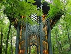 This is Thorncrown Chapel in Eureka Springs, Arkansas. The chapel was designed by Fay Jones and constructed in 1980 and is made mostly of wood and materials indigenous to northwest Arkansas.