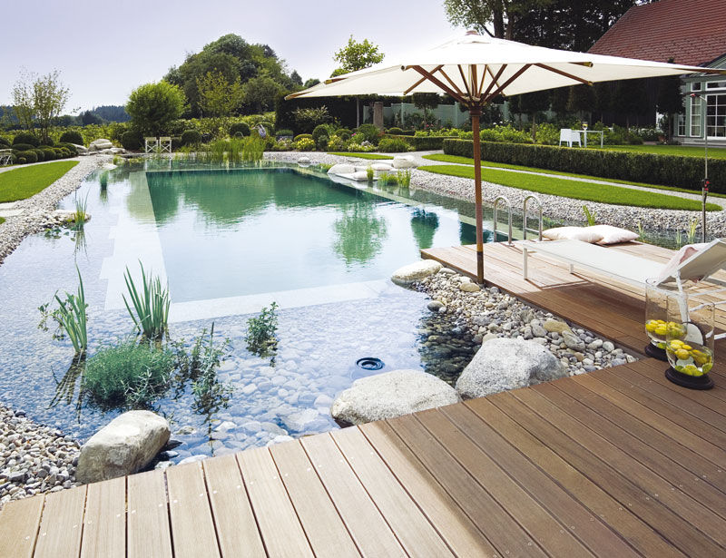 Natural swimming ponds the owner builder network for Pond swimming pool