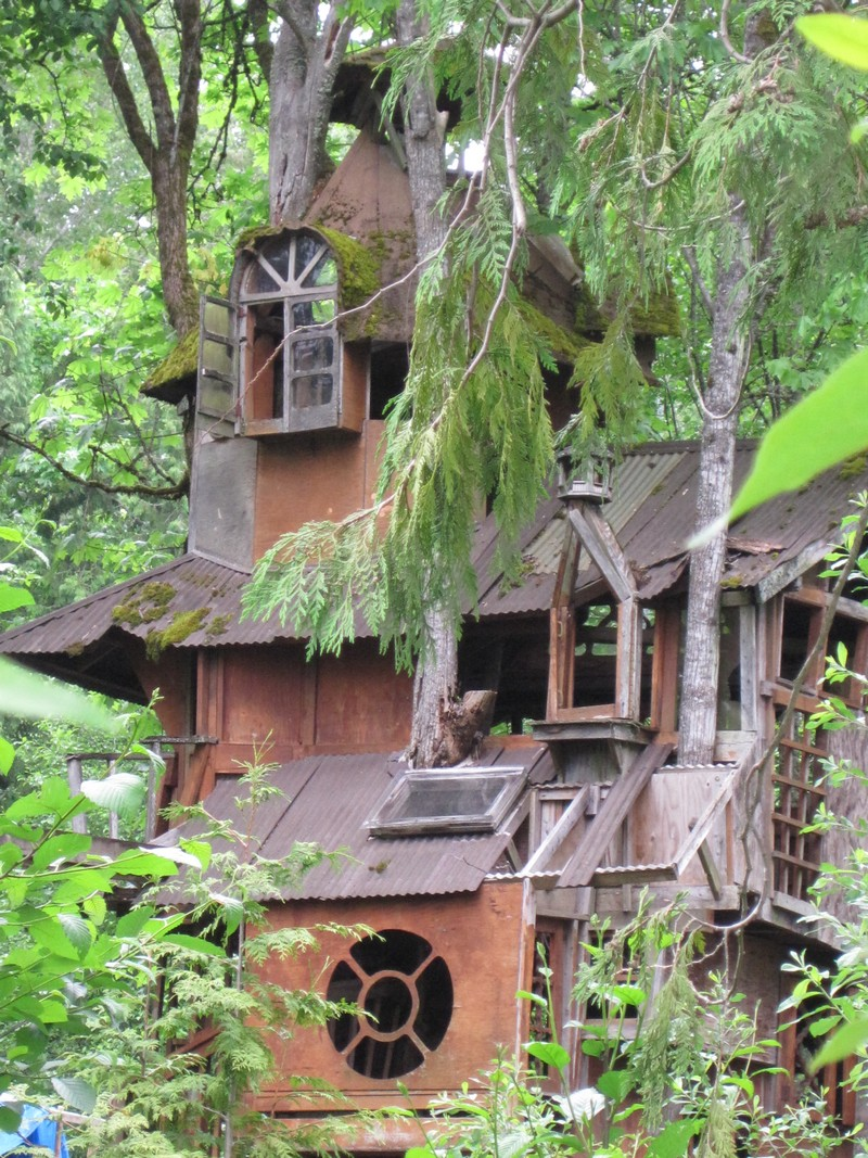 The Redmond Treehouse The Owner Builder Network