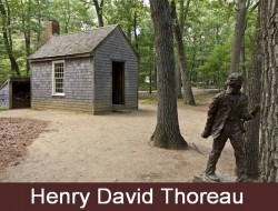 Henry David Thoreau Shed