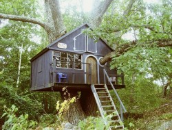 Small Treehouse - Massachusetts
