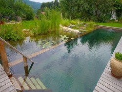 A natural swimming pond is a thing of rare beauty and practicality. This is just one of the examples that might inspire you.