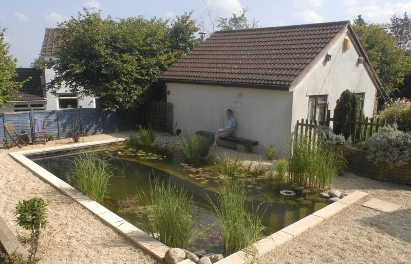 Tired of maintaining your conventional pool? Why not convert it to a natural swimming pond?