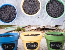 DIY Chalkboard Paint Herb Pots - The Owner-Builder Network