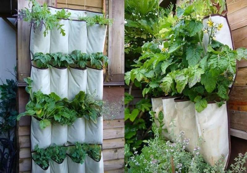 Hanging Shoe Storage Vertical Planter - The Owner-Builder Network