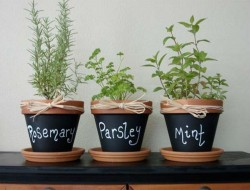 Chalkboard Clay Pots - The Robin's Nest