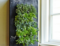 Chalkboard Wall Planter - Williams Sonoma