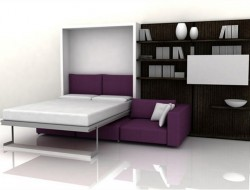 Functional Furniture With Folding Bed For Small Living Room