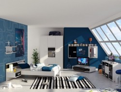 Contemporary Blue Teenage Boys Bedroom