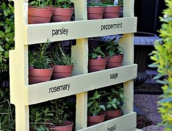 Here's another great use for the humble pallet - an instant vertical garden for herbs.  What do you think?