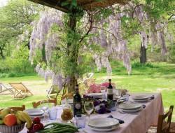 Wonderous wisteria