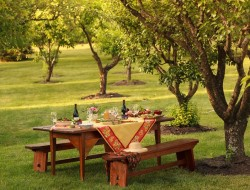 Orchard Dining