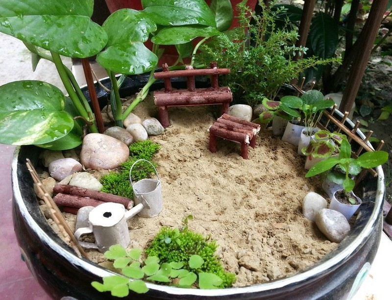 DIY Miniature Garden - The Owner-Builder Network