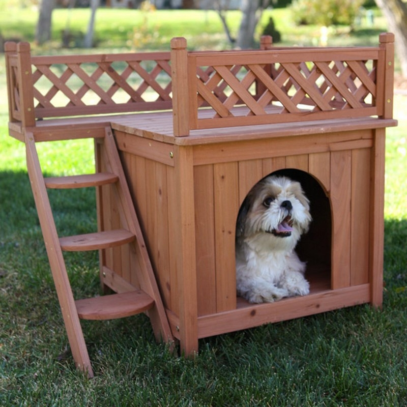 Home Design Ideas For Dogs: Every Dog Deserves A Viewing Deck!