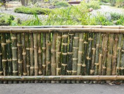 Bamboo Fence Design